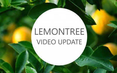 LemonTree – Top 3 Fundraising Challenges during COVID-19 – April 2020