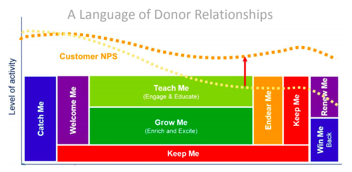 The different stages of the donor relationship